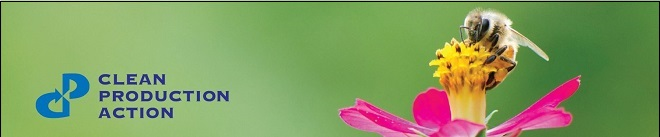 bee_pink_flower_bluetext_banner_email_topborder