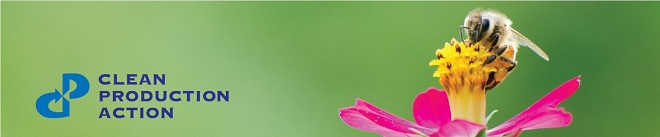 bee_pink_flower_bluetext_banner_email